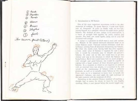Bruce lee notes
